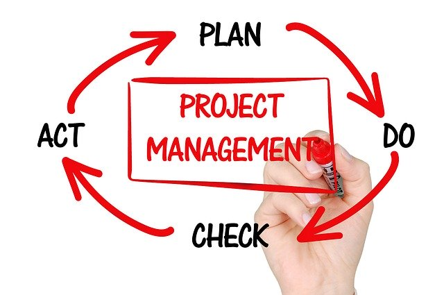 BIM Roles in projects